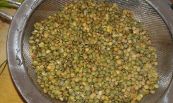 Blanchir les lentilles 5 minutes départ eau froide, les rincer .Blanch the lentils during 5 minutes and rinse under cold water