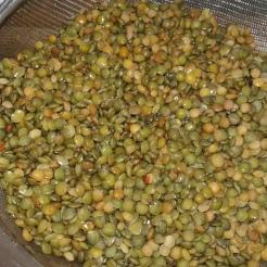 Blanchir les lentilles 5 minutes départ eau froide, les rincer .Blanch the lentils during 5 minutes and rinse under cold water